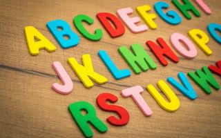Может ли самозанятый открыть школу иностранных языков?