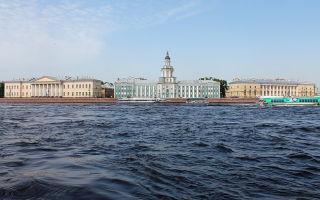 Как зарегистрироваться самозанятым в Санкт-Петербурге?