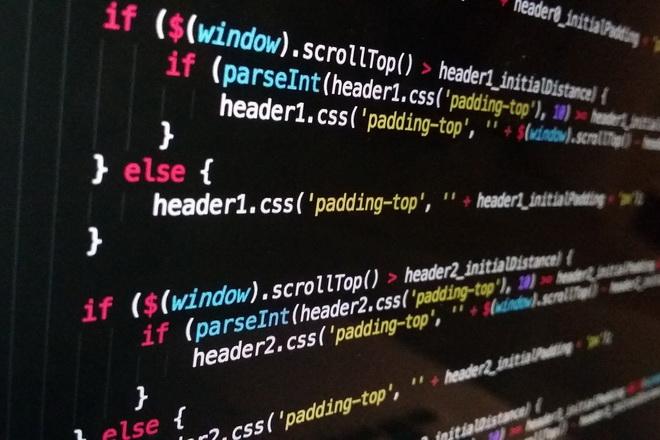 Может ли программист быть самозанятым?