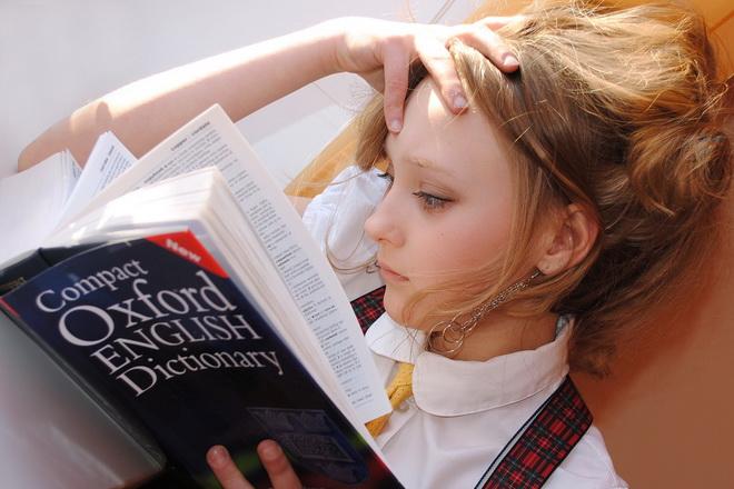 Может ли владелец языковой школы быть самозанятым?